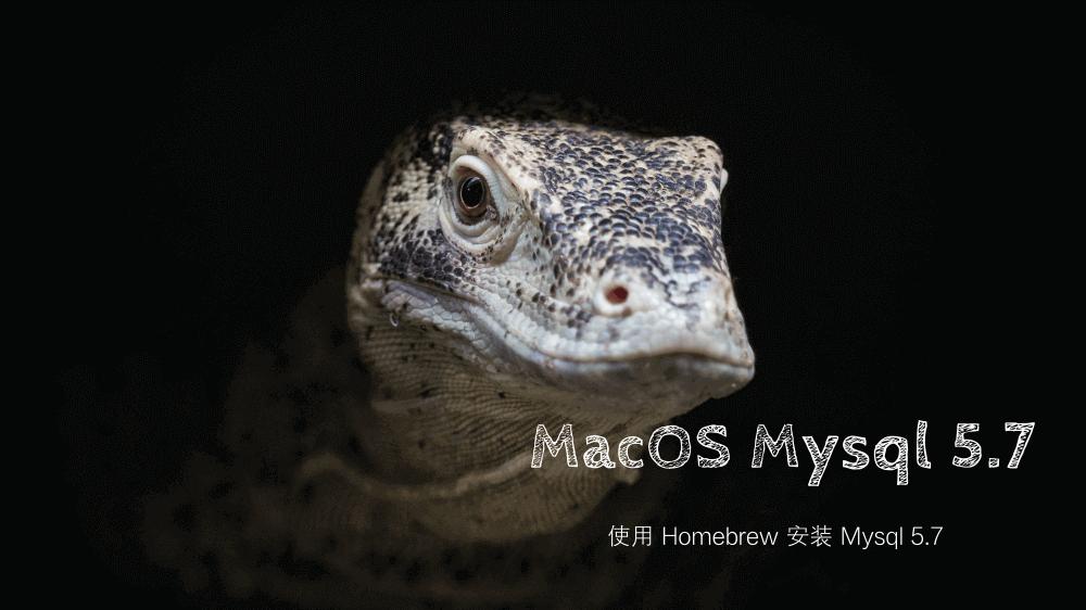 macos下安装Mysql 5.7版本